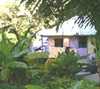 Carriacou cottage watercolor - belairgardencottage.com