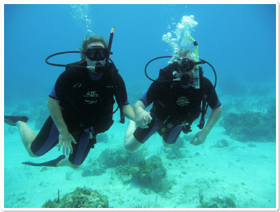 Great Diving in Carriacou - http://belairgardencottage.com